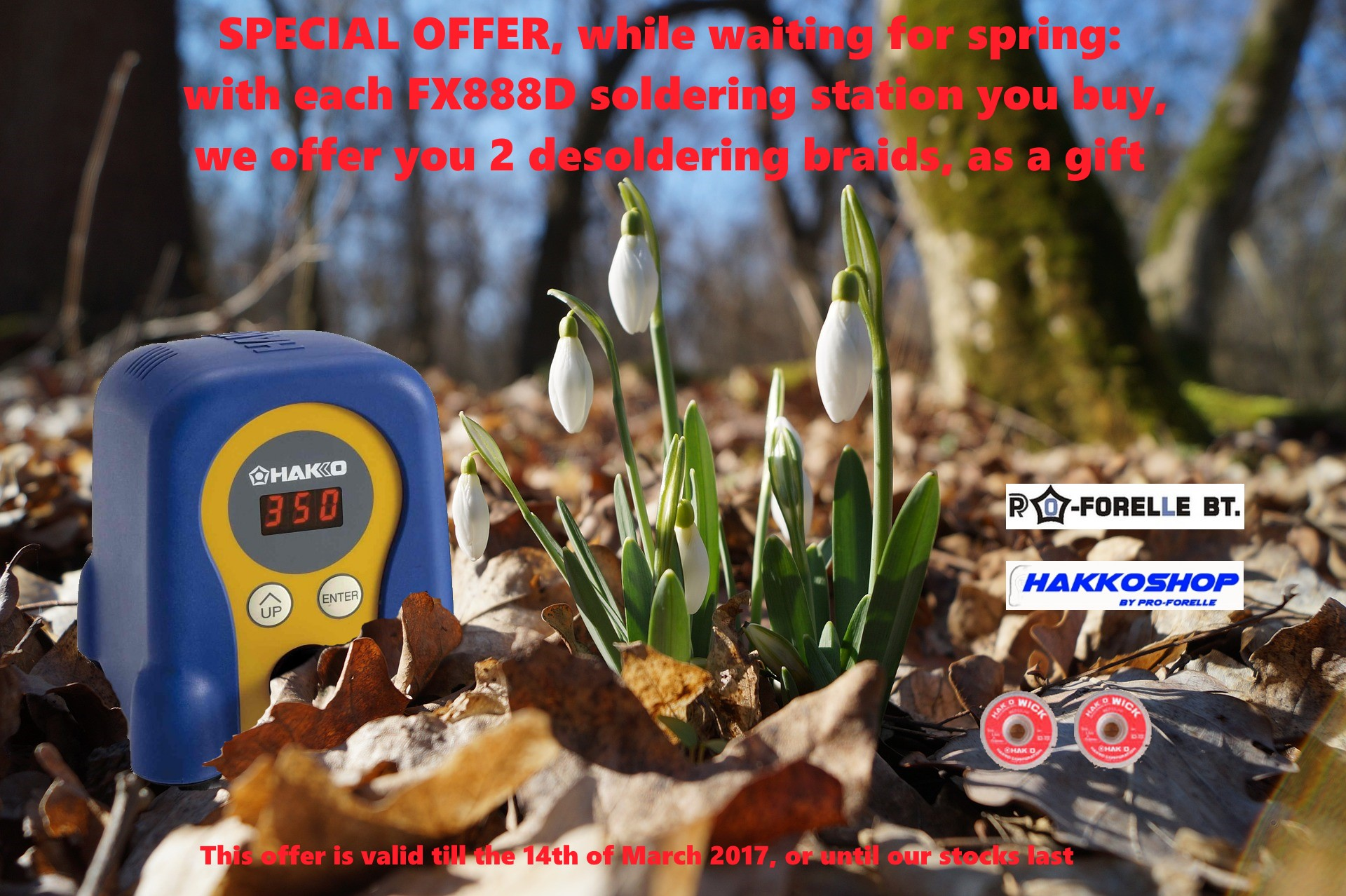 Special offer springtime